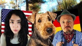 Discussing Life In Germany And Relationships With Crystal Wings From The USA | Get Germanized