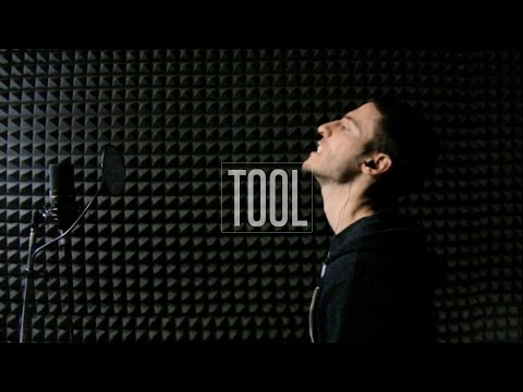 Tool - Vicarious (vocal cover w/ lyrics)