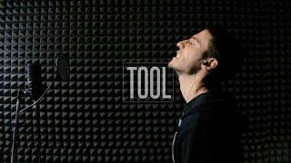 Tool - Vicarious (vocal cover w/ lyrics)