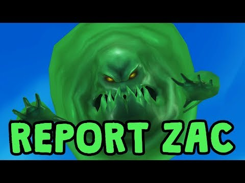 Report Zac