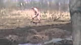 видео Австралопитек