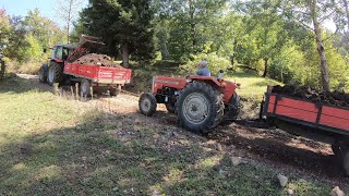 I pulled out my grandfather's Tractor | Massey Ferguson 5440 [1440p60]