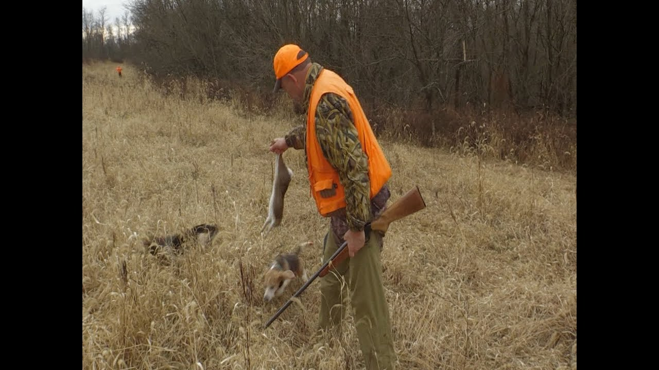 Public Land Rabbit Hunt