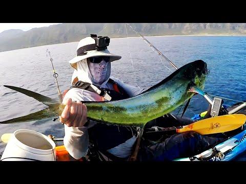 BACK TO BACK MAHI MAHI - HAWAII OFFSHORE KAYAK FISHING