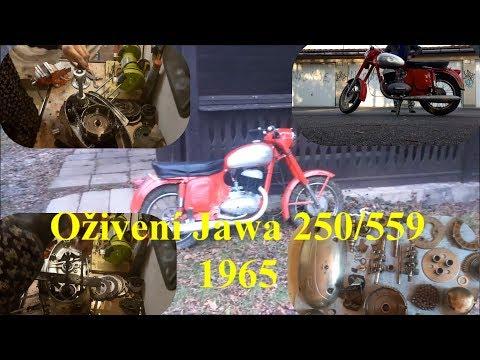 Oživení JAWA 250/559......1965