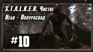 S.T.A.L.K.E.R. Чистое Небо - Полураспад #10 (Дикая резня на складах и мосту)