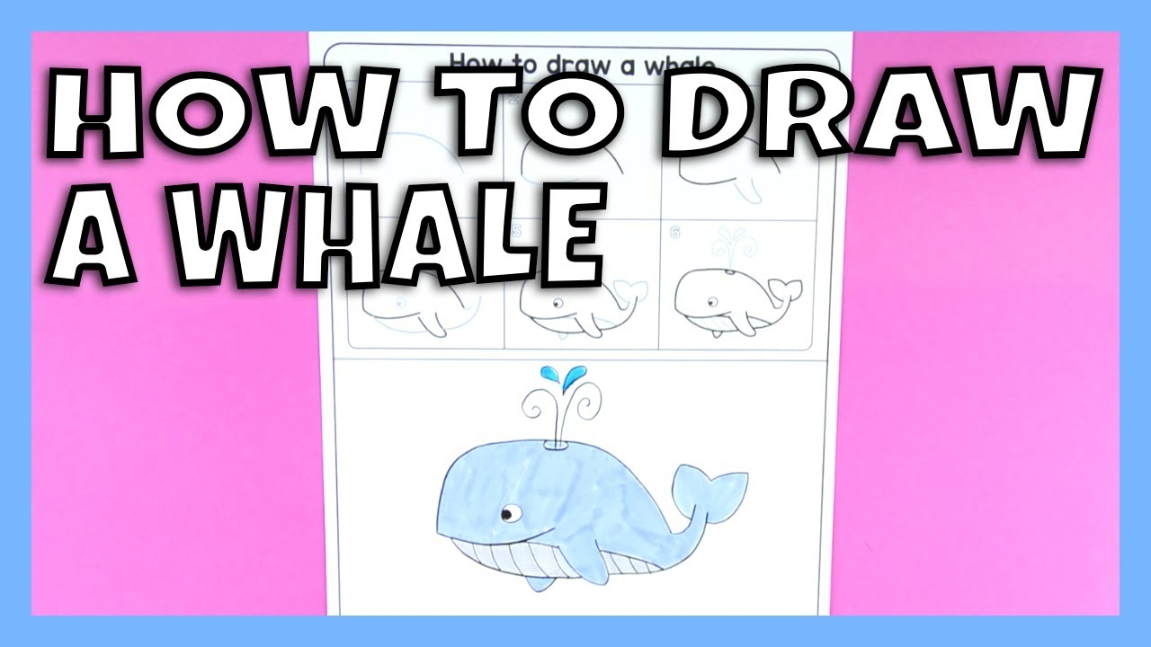 how to draw a whale step by step drawing instructions for kids