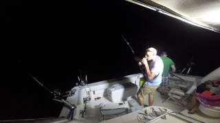Lake Michigan Salmon Fishing 2016