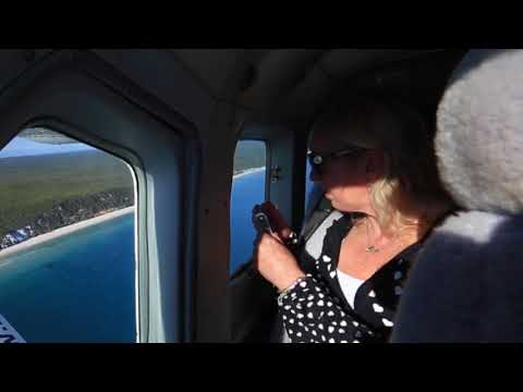 Lady Elliot Island | Great Barrier Reef Day Trip | Experience Oz