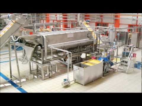 Citrus juice and oil extraction