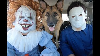Pennywise Surprises Michael Myers & Dog With Dancing Car Ride!