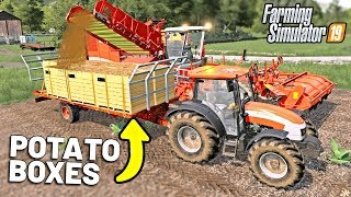 LOADING POTATO BOXES - Shamrock Valley 19 - Farming Simulator 2019