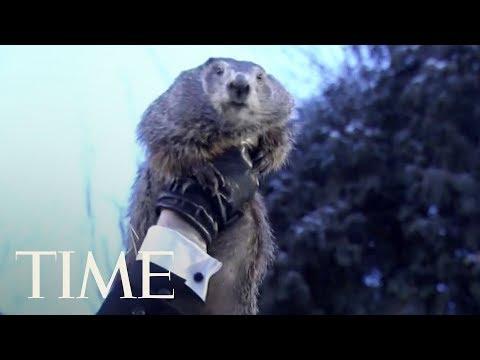 Groundhog Day 2018: Punxsutawney Phil Predicts Winter Is Sticking Around | TIME