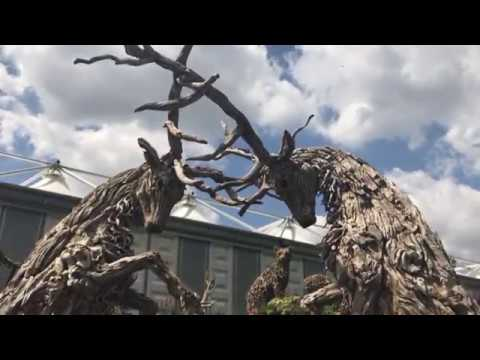 James Doran Webb: Driftwood Sculptures