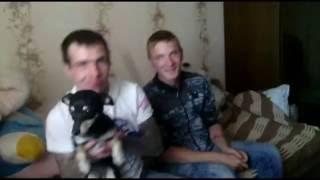 Юрик и Дурик и Оператор наркоман на столу стоит )))