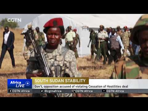 South Sudan government blames opposition forces for ceasefire violation
