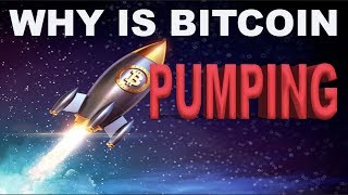 Why Is Bitcoin Pumping??