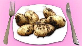 Die 5 leckersten Wege, Kartoffeln zuzubereiten.