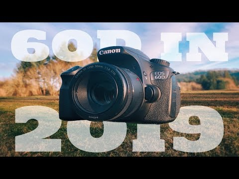 Canon 60D In 2019