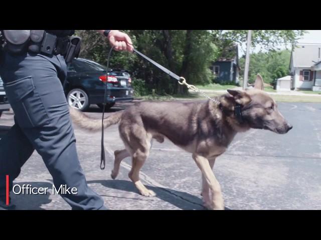 Animal Wellness Center Oak Creek: Testimonial - Officer Mike