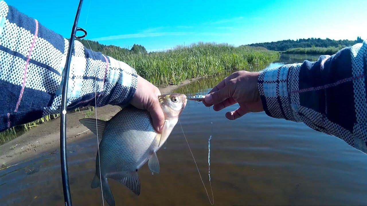 ловля рыбы на реке неман