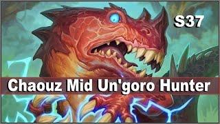Chaouz Mid Un'goro Hunter