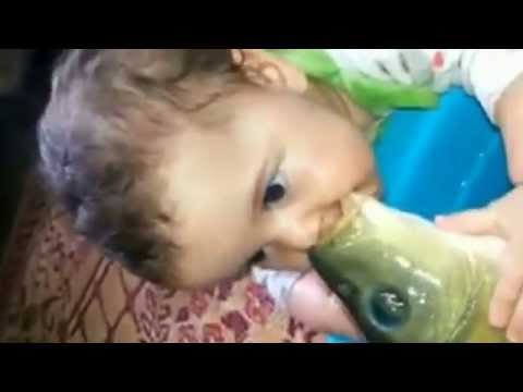 Funny cute baby   Best Videos of the Month Compilation    February 2015 - Baby Kiss a Fish