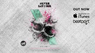Never Say Die Vol. 3 (Album Megamix)