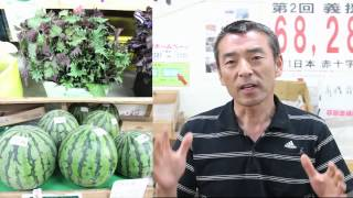 大阪、枚方 野菜 ブラーボで紹介 www.bra-vo.jp.