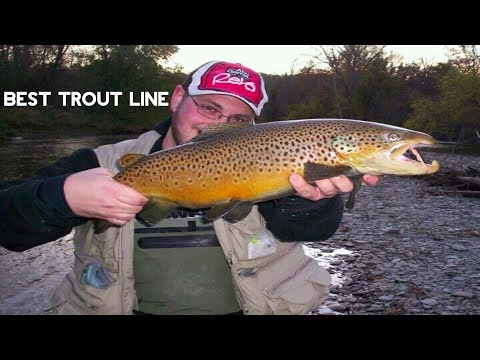 Trout Fishing - Best Line For Trout?