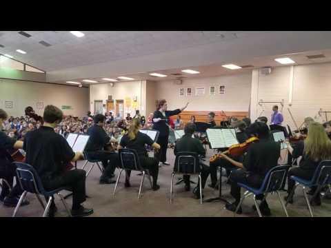 Lavilla school of the arts chamber orchestra at Mandarin oaks Elementary 2016