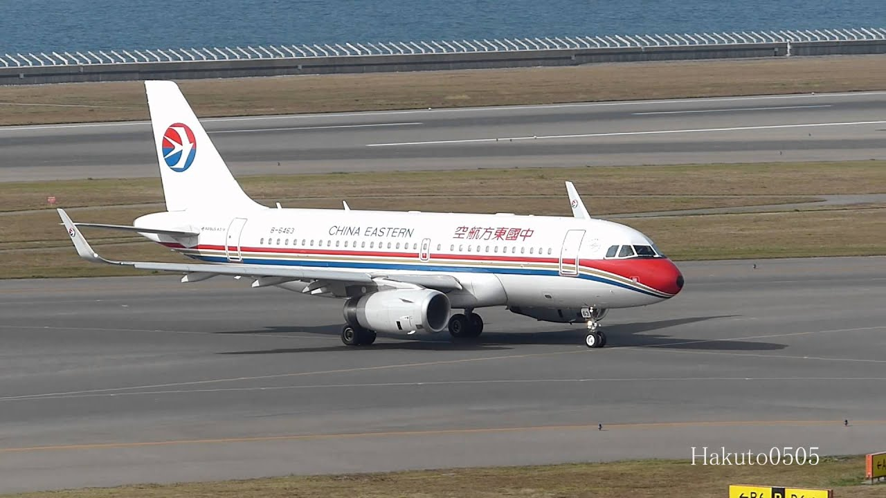 China Eastern Airlines Airbus A319-132 B-6463 Landing at ...