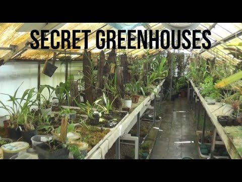 On The Go: Secret Orchid and Succ Greenhouses at Succulent Collectors' Spring