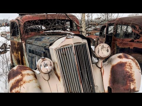 Wow! Amazing Junkyard Tour! Fields Of Muscle Cars Classics and More!