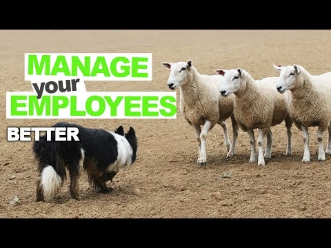 Making Your Cleaning Company Employee Management EASY!