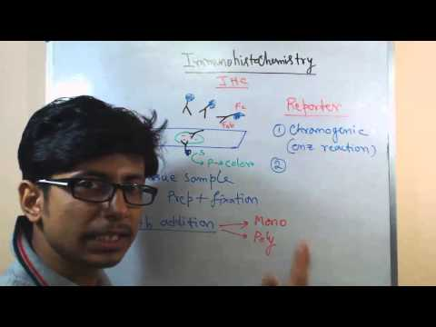 Immunohistochemistry Lecture (principle And Process)