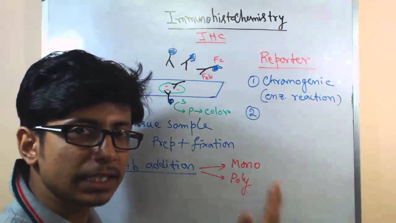 Download Immunohistochemistry lecture (principle and process)