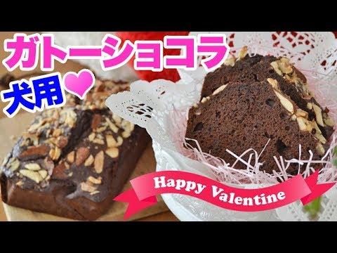 犬用バレンタイン♡ガトーショコラの作り方 人間も一緒に食べられる犬用おやつ