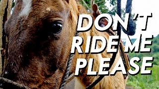 DON'T RIDE THE HORSES IN TAAL • Animal Cruelty in the Philippines