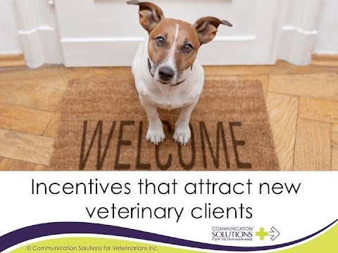 Incentives that attract new veterinary clients
