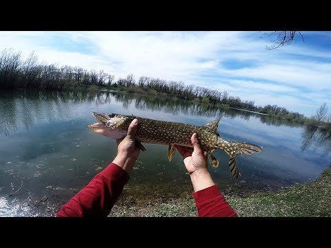 EARLY SPRING PIKE FISHING