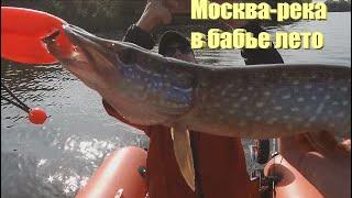 Рыбалка в бабье лето на Москва реке Ловля с лодки
