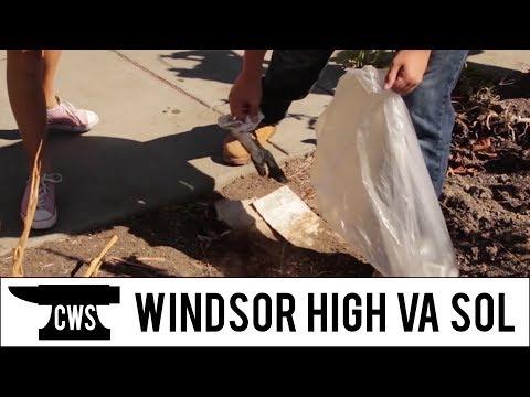 Windsor High Vineyard Academy: Students of Life