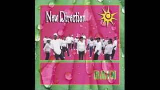 Watch New Direction I Can Make It video