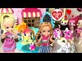 Elsa and Anna Toddlers Pet Adoption! Beauty Salon Makeover & Pet Clinic - Cinderella - Toys - Dolls