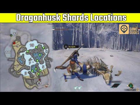 Where To Get Dragonhusk Shards In Monster Hunter Rise