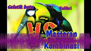 Gambar cover [Audio Master] Masteran paling hit, Kombinasi Gelatik batu & Kolibri, Bikin burung makin jago gacor