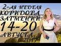 2-ая НЕДЕЛЯ КОРИДОРА ЗАТМЕНИЙ 14- 20 АВГУСТА 2017. Ведическая астрология