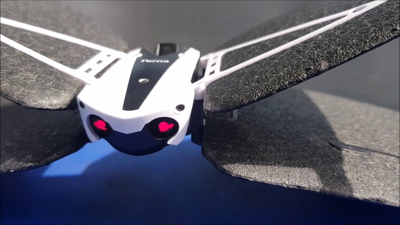 Parrot Swing Minidrone And Flypad Controller Review For Beginners