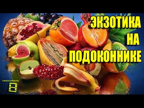 Цвет граната (1968) — смотреть онлайн — КиноПоиск